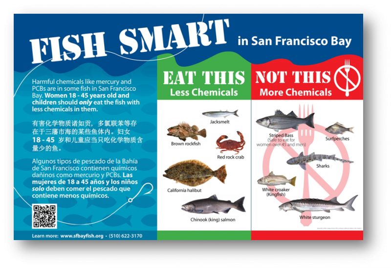 FISH SMART SIGN.png