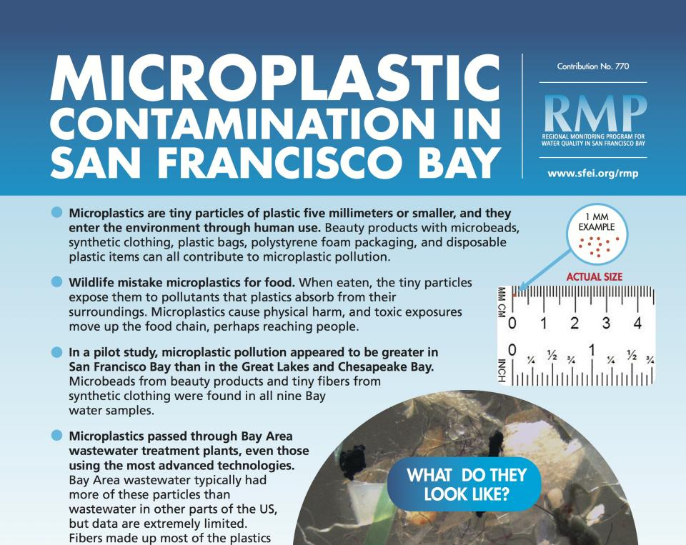New Microplastic Fact Sheet puts Bay study findings in context | San