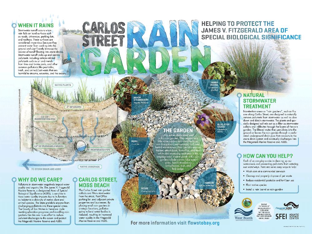 Carlos Street Rain Garden Interpretative Sign | San ... on rainwater garden design, rose garden design, rose landscape design,